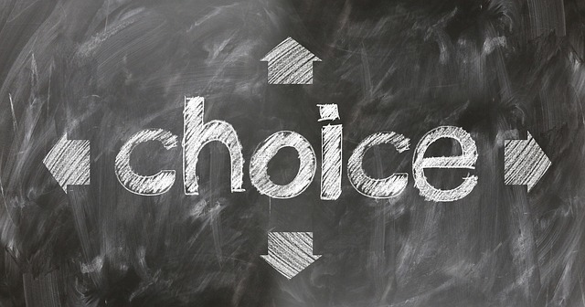 選択肢の図